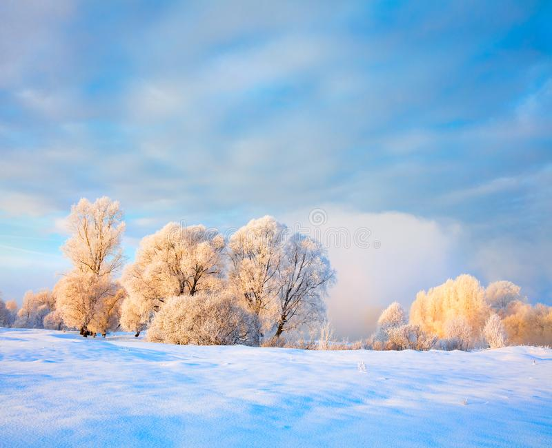 Winter landscape. Cold day royalty free stock images