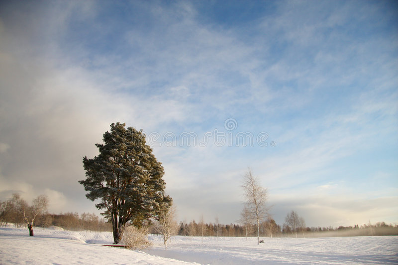 Download Winter Landscape With Dark Clouds Coming Over Sky Stock Image - Image: 7695589