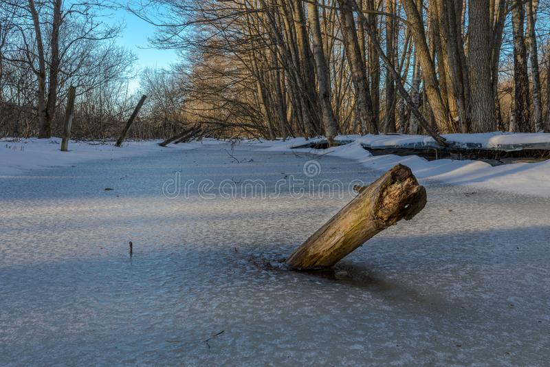 A winter landscape decorated with sunbeams shining on a piece of timber trunk, iced in a frozen stream, at sunset. stock photos