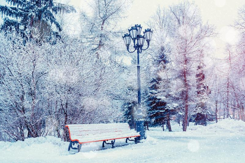 Winter landscape with falling snowflakes- bench covered with snow among frosty winter trees stock photos