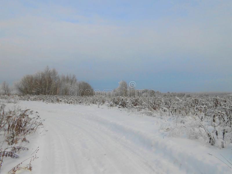 Winter landscape with trees and fresh snowdrifts. stock images