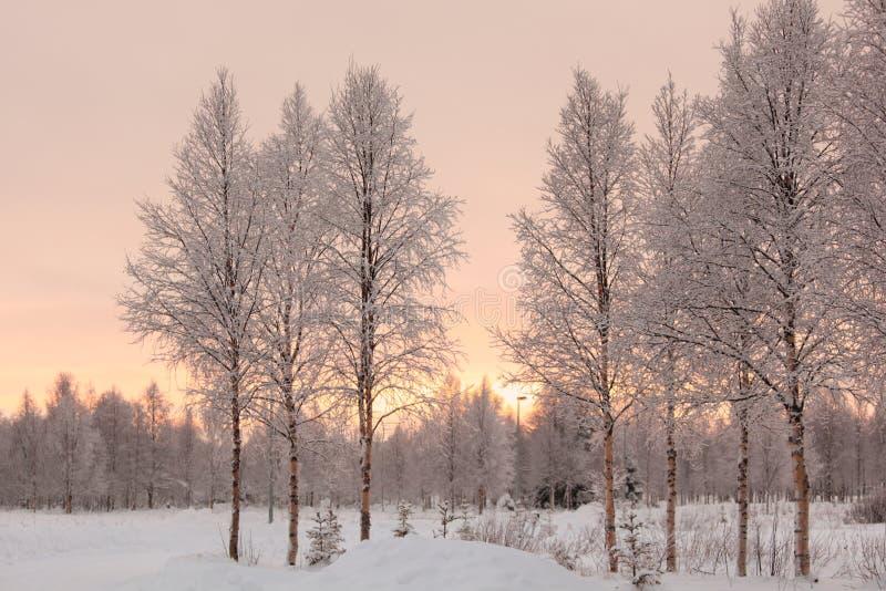 Winter landscape in Finland stock photos