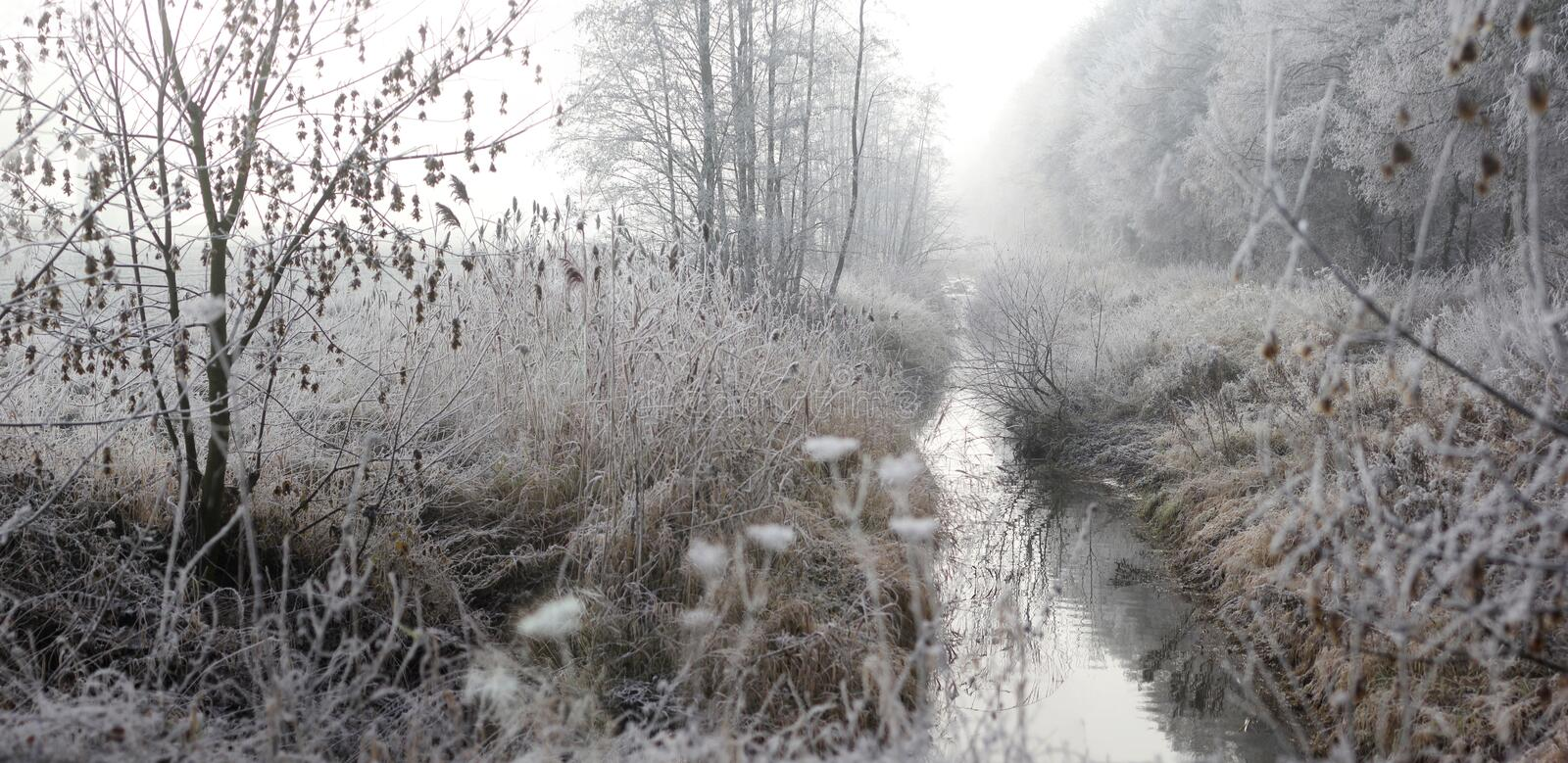 Winter landscape with fog, hoar frost and rising sun. Winter landscape in the morning with fog, hoar frost and rising sun stock photo