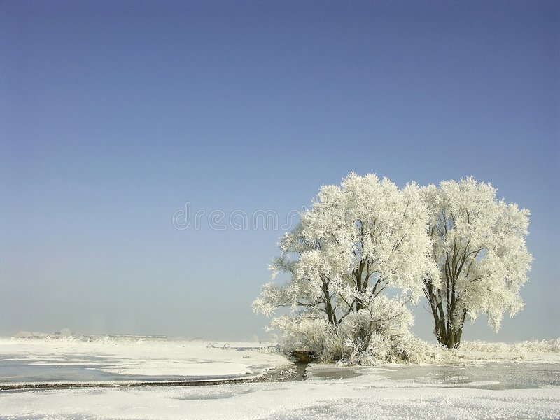 winter landscape, frost covered trees