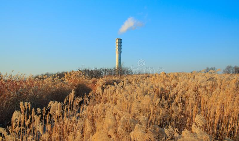 Winter landscape of Haneul Park. Another name is Skypark, in Seoul, Korea stock photo