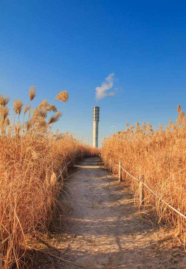 Winter landscape of Haneul Park. Another name is Skypark, in Seoul, Korea stock photos