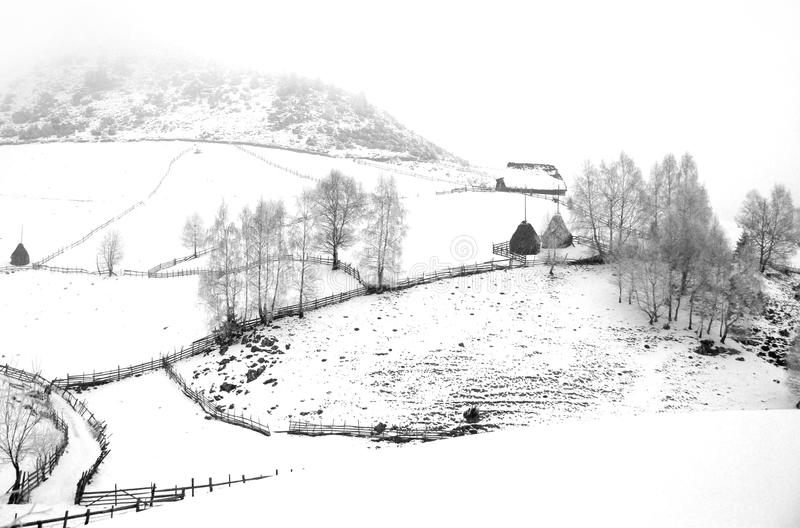 Download Winter Landscape With Haystacks Stock Photos - Image: 19609933