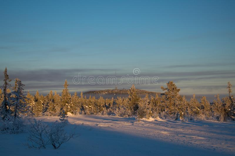Winter landscape in Hedmark county Norway. Beautiful Forest in the Sunset. Magical december time royalty free stock image