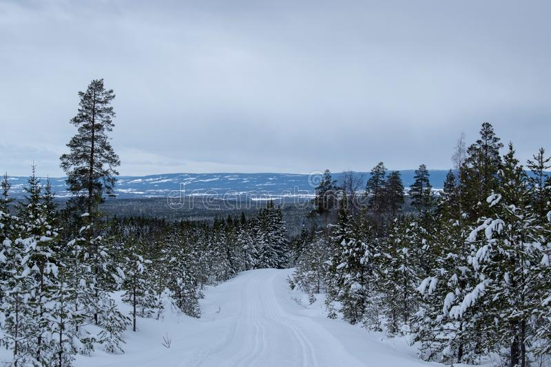 Winter landscape in Hedmark county Norway.  Winter wonderland, snow covered trees and a lot of snow on the ground. Winter landscape hedmark county norway stock photos