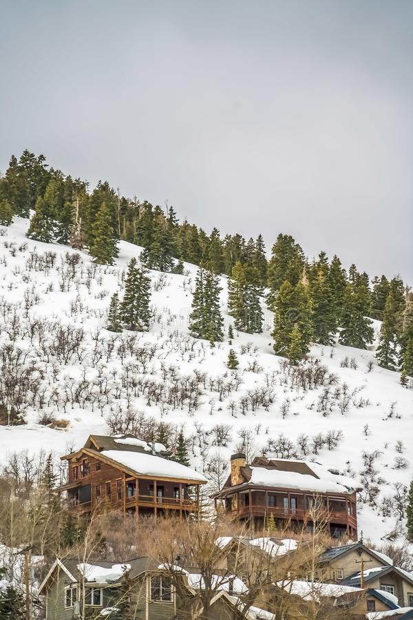 Winter landscape with homes and conifers on a mountain under cloudy gray sky. The mountain slope and the roofs of the houses with balconies are covered with stock photos