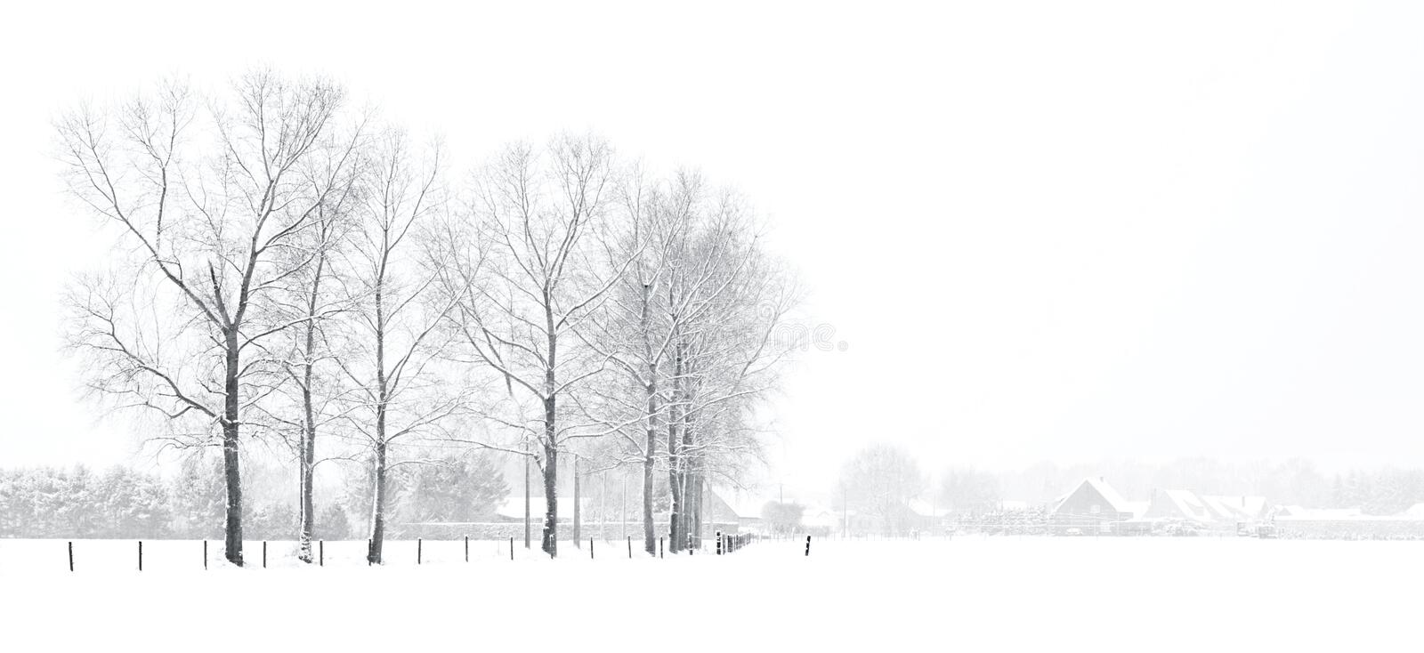 Winter landscape with houses. Lane of trees in winter landscape - tranquil scene stock photography