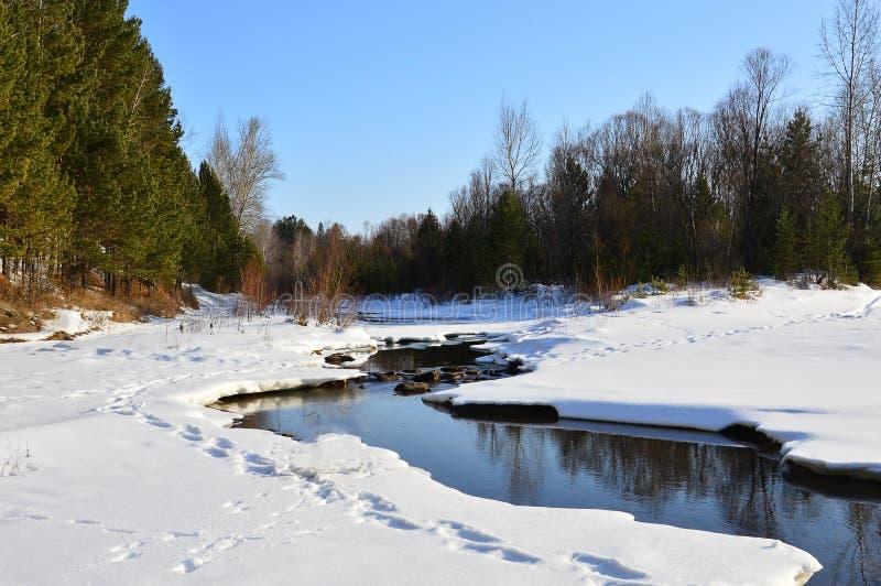 Winter landscape. Ice-river. Nonfreezing. Siberia. royalty free stock image
