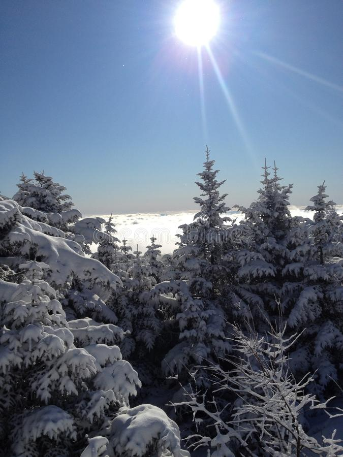 Winter landscape - Killington Vermont royalty free stock photos