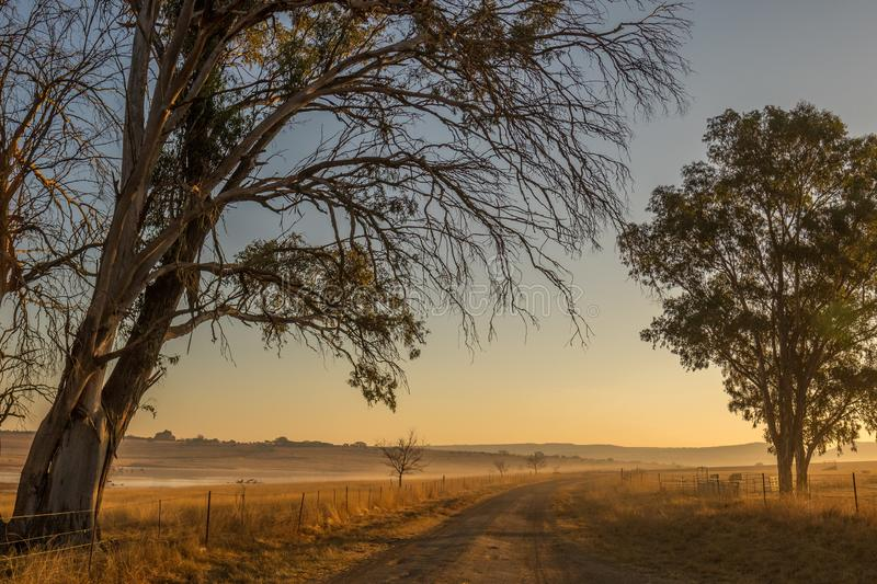 Winter landscape kwaZulu-Natal South Africa. Winter landscape with mist, dry trees, dry grass, fences and a dirt road image in landscape format royalty free stock photography
