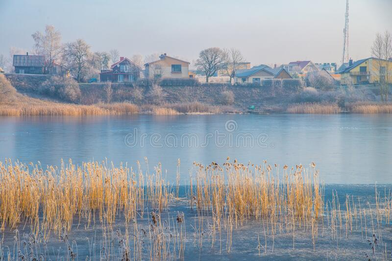 Houses near lake. cold weather in Europe. Winter landscape of lake in a city. frosty morning, lake is in blue color. near lake are reeds in orange. houses near stock images