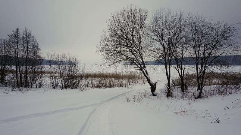 Winter landscape on the lake. Russia, trees, snow, ice, nature, forest, sky, clouds, plant royalty free stock photography