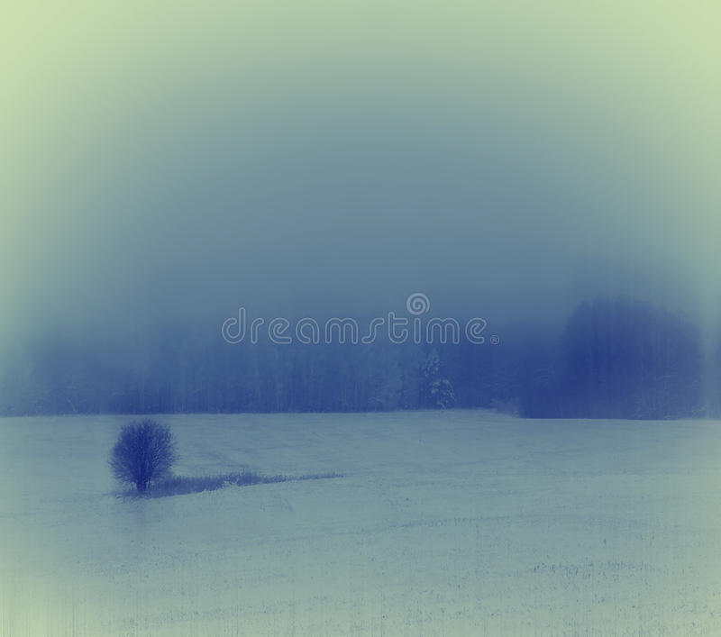 Download Winter Landscape With A Lonely Tree Stock Photo - Image: 37444970