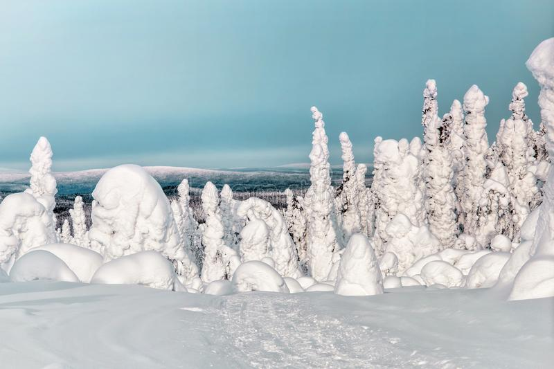 Winter landscape. Magnificent view from Mount Kivakka stock image