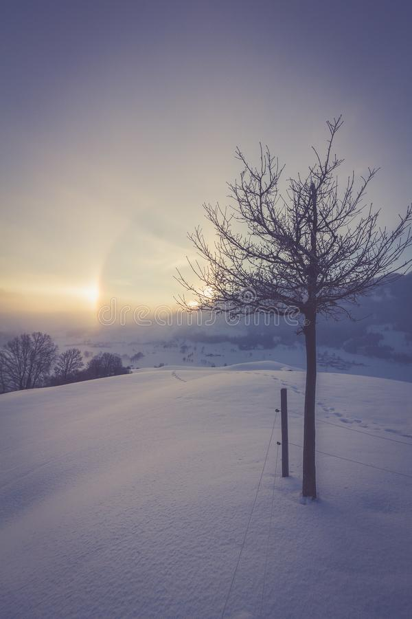 Snowy winter landscape in the alps, sunrise with halo phenomena. Winter landscape in the morning: Sunrise and halo phenomena, alps, snow, nature, beauty stock images