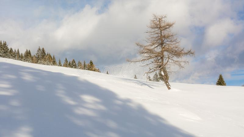 Winter landscape in a mountain valley with snow.  royalty free stock photos