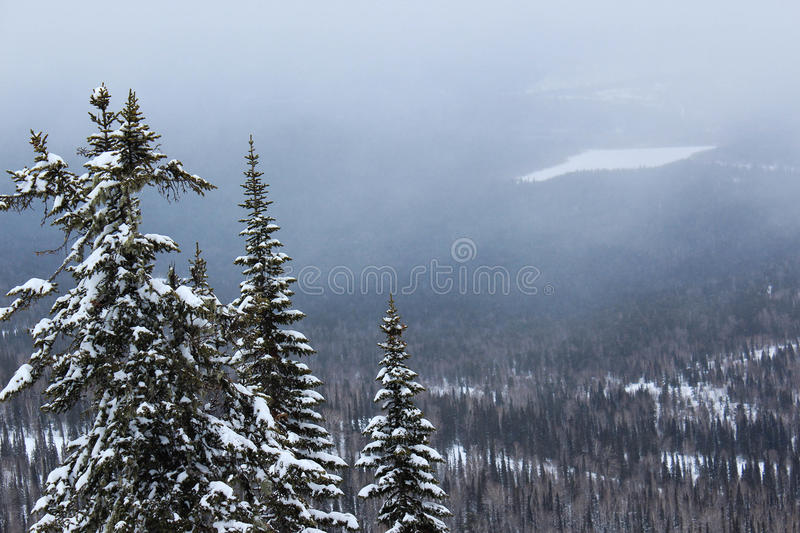 Winter landscape in mountains royalty free stock images