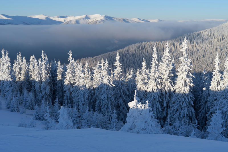 Winter landscape in mountains royalty free stock photos