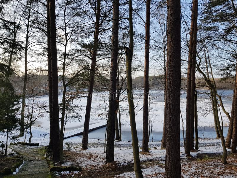Winter landscape near frozen water of lake. stock images