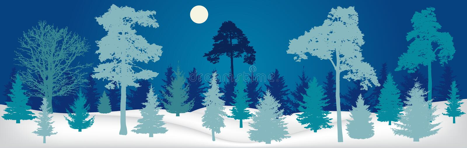 Winter landscape. Night forest panorama, silhouette. vector illustration