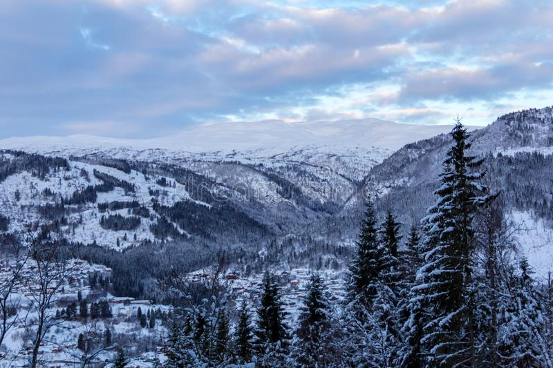 Winter landscape in Norway trees after sunset. Winter landscape in Norway trees sunset royalty free stock image