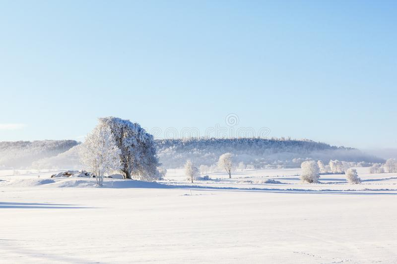 Winter landscape over a rural landscape with fields stock photo