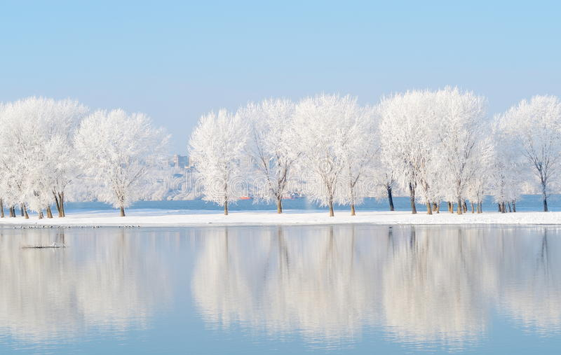 Winter landscape with reflection in the water. Winter landscape with beautiful reflection in the water royalty free stock images