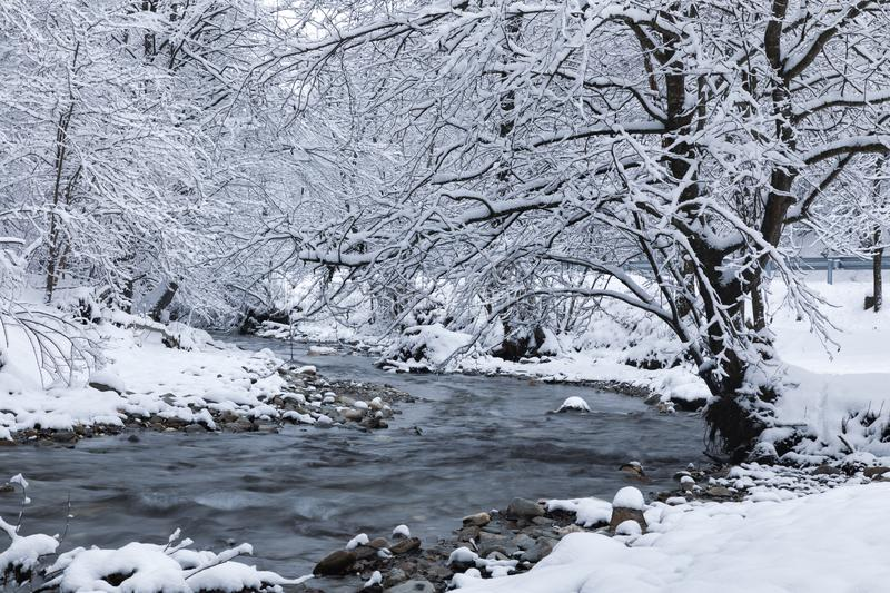 Winter landscape with a river royalty free stock image