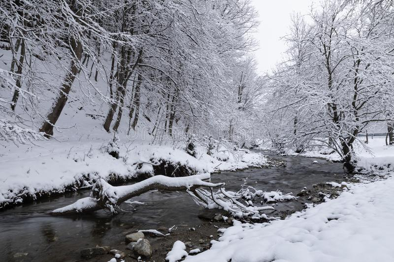 Winter landscape with a river stock images