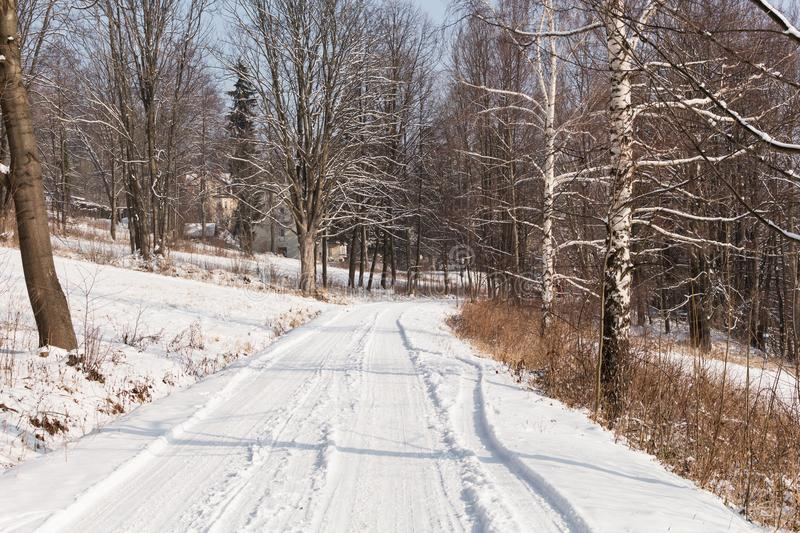 Winter landscape with road forest and blue sky. Wintry path. Frosty sunny day. Snowy winterly landscape. stock photo