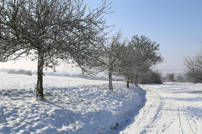 Winter landscape. Winter road among the trees. royalty free stock photography