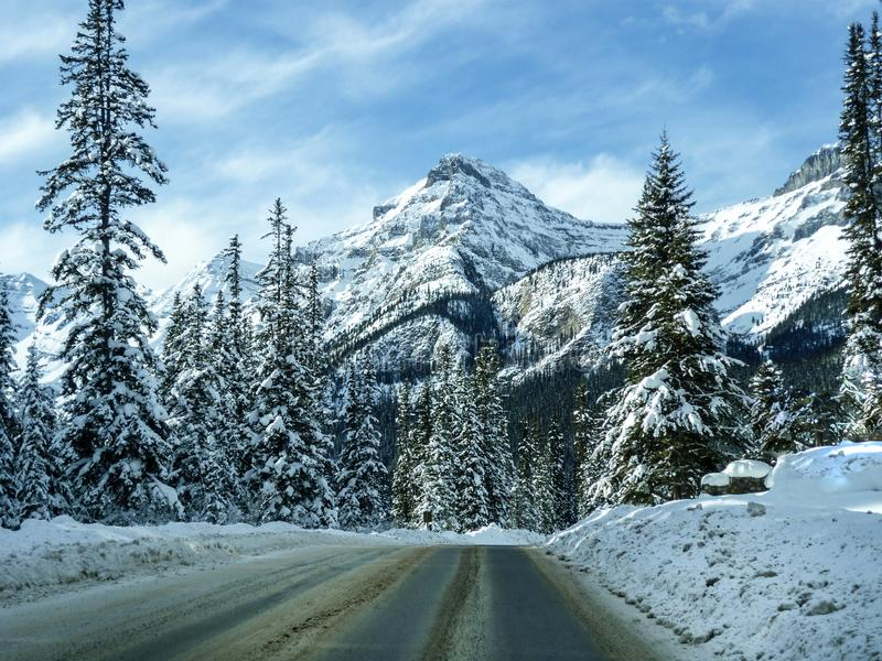 Winter landscape in the rocky mountains near lake louise. Nature in snow in the rocky mountains near lake louise stock photo