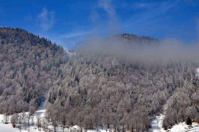 Download Winter Landscape In Romania Stock Photos - Image: 13152763