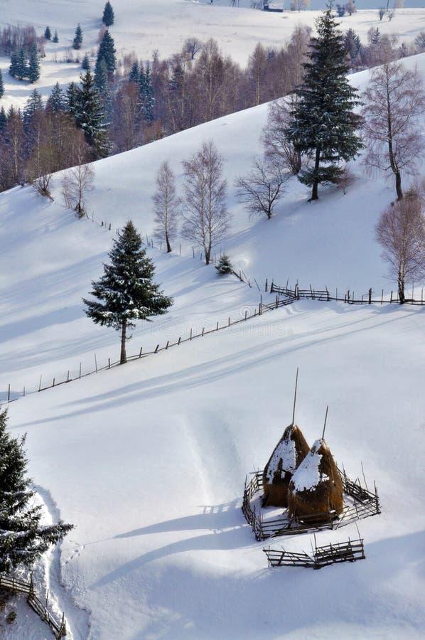 Download Winter Landscape In Romania Stock Image - Image: 13218753
