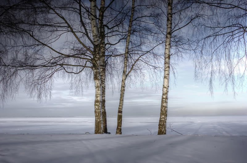 Winter landscape, Russia royalty free stock photo