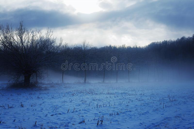 Winter landscape scenery italian countryside. Landscape of countryside field cover by snow and haze very mystery and mystic mood royalty free stock photo