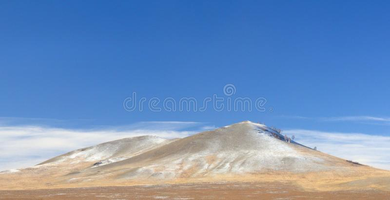 Winter landscape with a smooth hill covered with a yellow dry grass, bare trees and first snow under dark blue sky. In Khakassia, Russia royalty free stock image