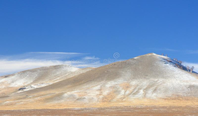 Winter landscape with a smooth hill covered with a yellow dry grass, bare trees and first snow under dark blue sky. In Khakassia, Russia stock photo