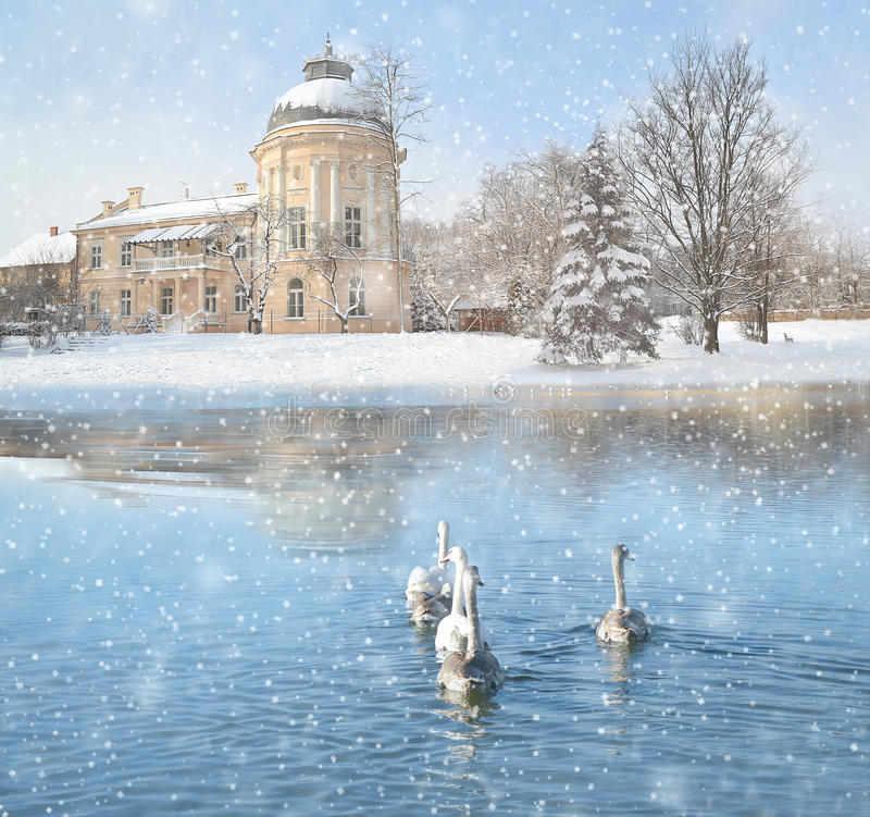 Winter landscape with snow, castle and swans.  royalty free stock photography