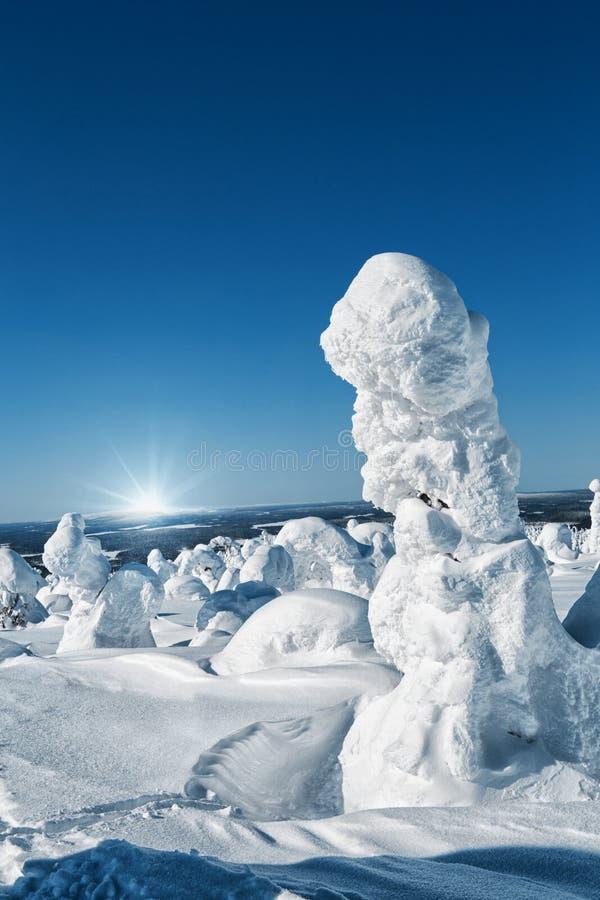 Winter landscape. The snow-clad trees on Mount Nuorunen stock photos