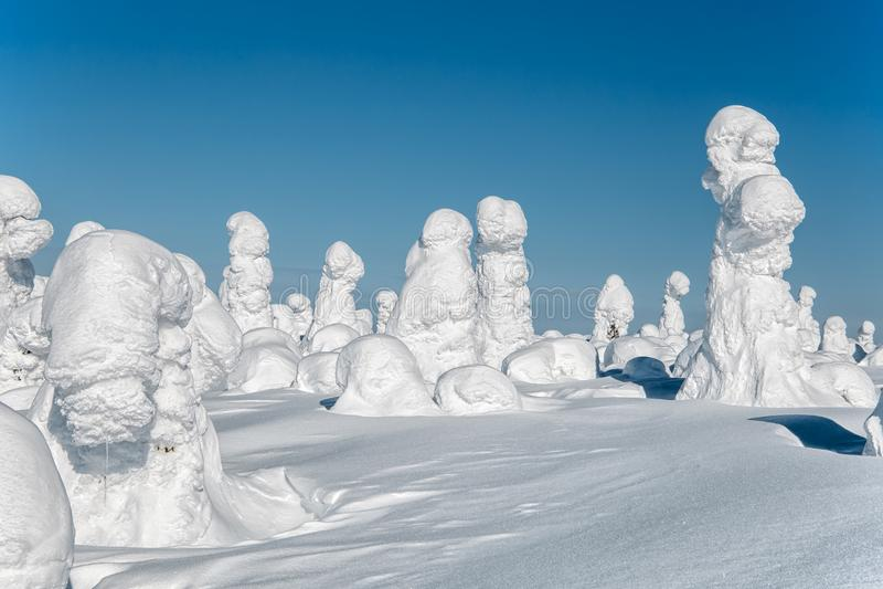 Winter landscape. The snow-clad trees on Mount Nuorunen stock photo
