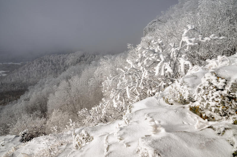 Winter landscape with snow in mountains Sitno royalty free stock photo