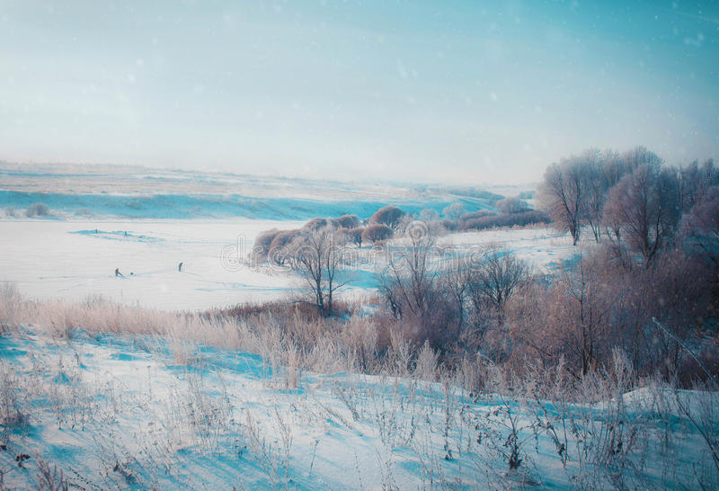 Winter landscape in snow nature stock photo