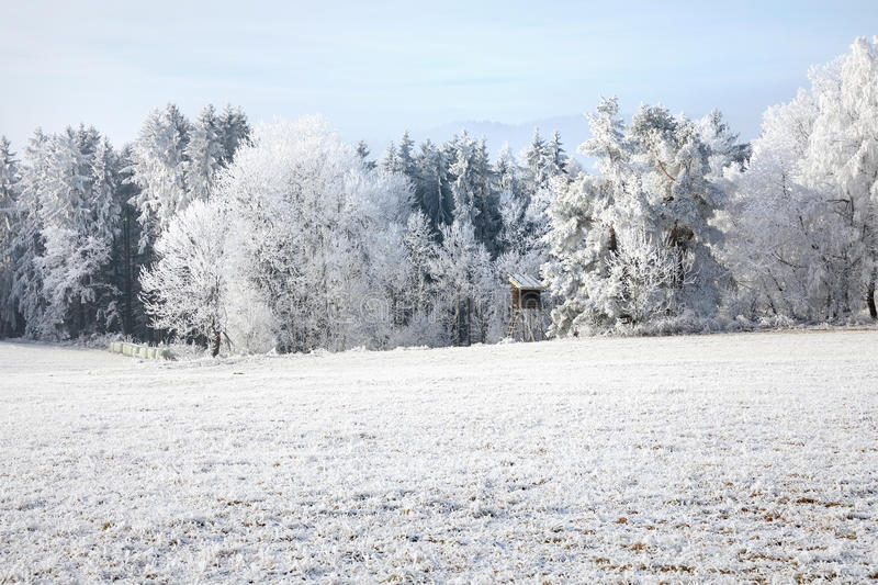 Winter landscape and snow wrapped trees in Sumava, Czech republic,. Winter landscape and snow wrapped trees in Sumava, Czech republic. Frost-covered meadows and royalty free stock image