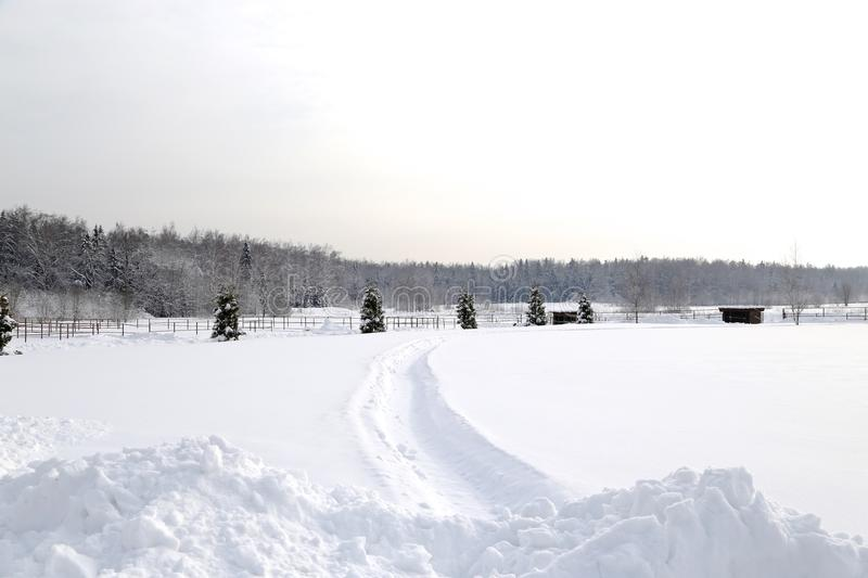Winter landscape after snowfall in sunny day stock photography