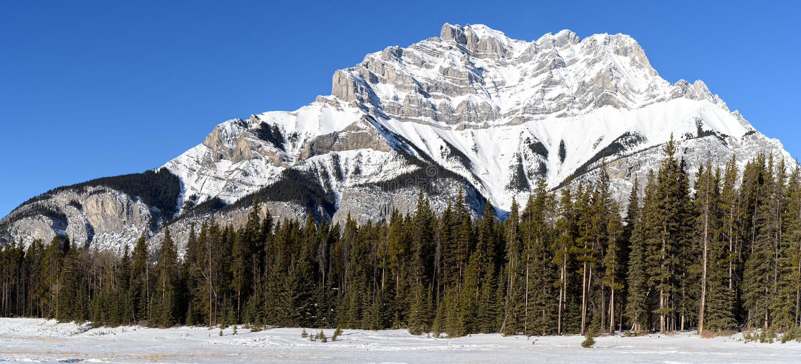 Winter Landscape of the snowy top of Cascade Mountain in the Ban royalty free stock photos